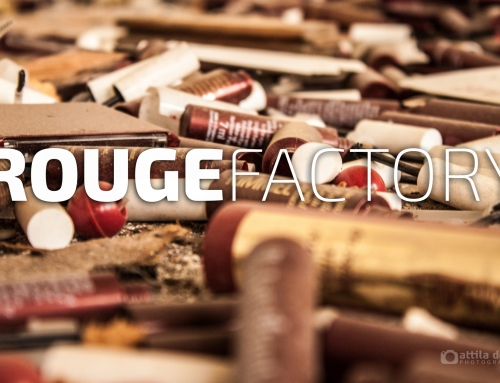 #054 Rouge Factory